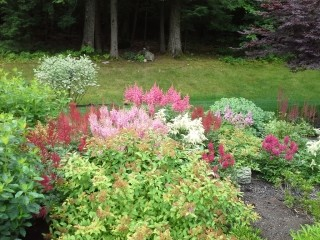 landscape gallery strafford nh - Colorful plantings in front yard