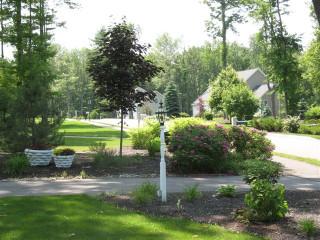 Front Yard Driveway Flower Garden