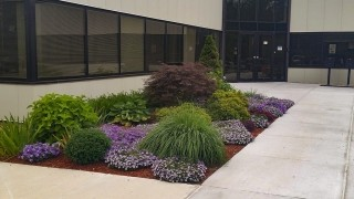 Flow plantings along entrance to a commercial building in Portsmouth, NH
