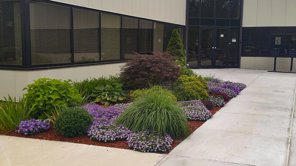 Business Park Planting around entrance